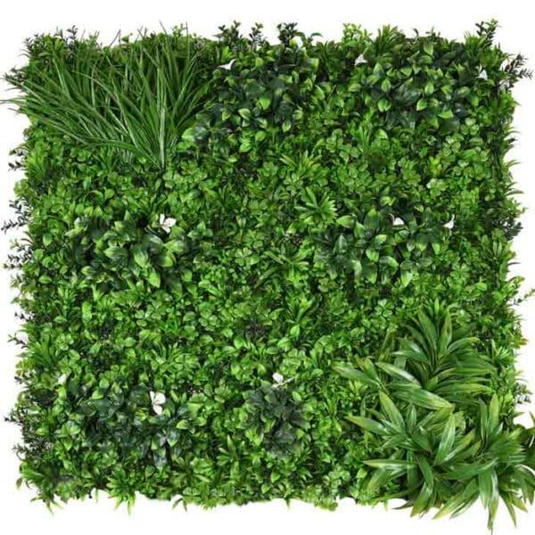 jardín vertical plantas amazónicas